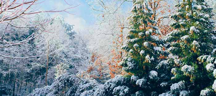 winter is a wonderful time to enjoy shopping, dining, and the wonderful sights in Warrington, Bucks County PA